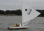 Oktoberfish Sunfish Regatta - Stewart Draheim  - Sailing