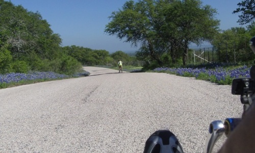 Bluebonnets - Texas Hill Country 2012
